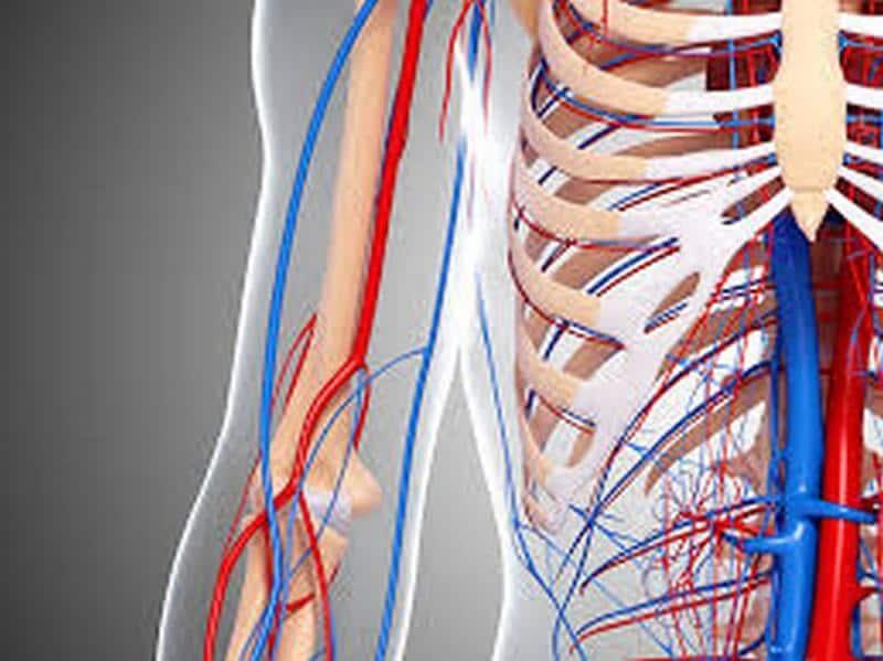 visite specialistiche angiologia