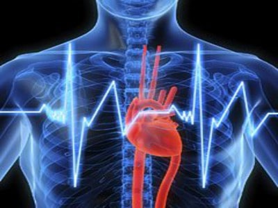 Visite Specialistiche - Cardiologia