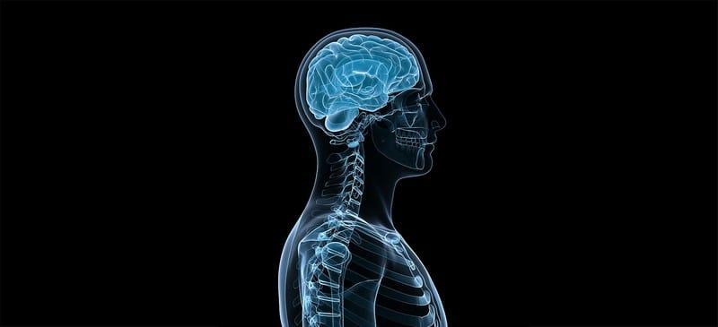 visite specialistiche neurochirurgia