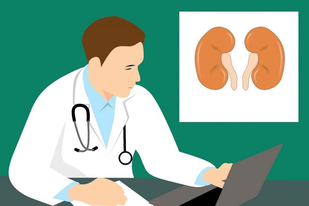Nefrologo visita specialistica per prevenire insufficienza renale